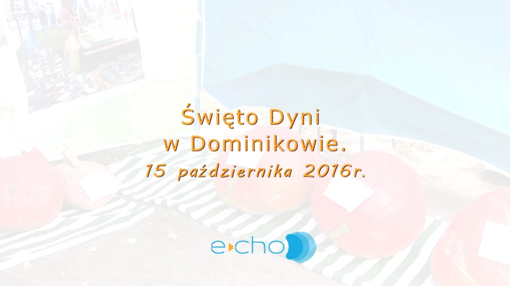 drawno/dyni2016_PTI.jpg