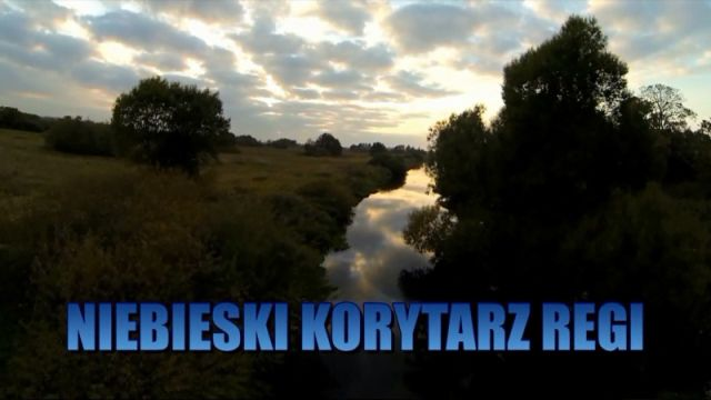 gryfice/niebieski_korytarz_regi.jpg