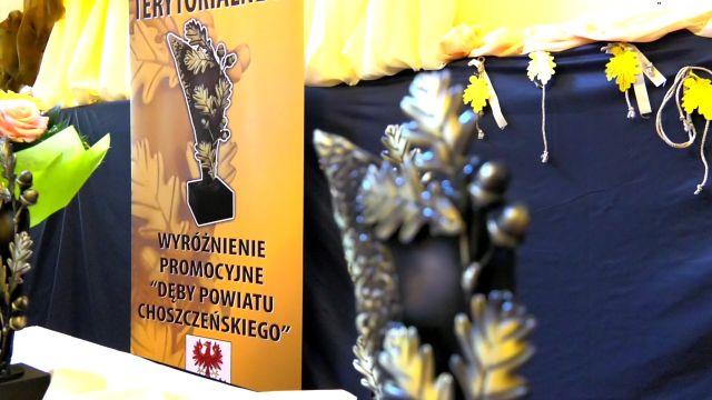 powiatchoszczenski/film12.jpg